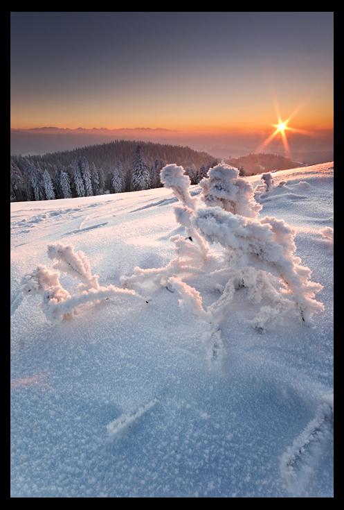 Winter in Gorce Mountains by KarolP