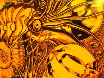 Ammonites y las esferas (Detail) by fluorencia