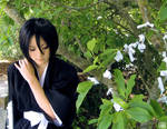 Kuchiki Rukia - Make a Wish