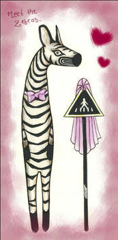 Meet the Zebras