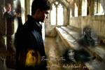 -Harry Potter-