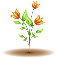 Green Plant by abdussadik