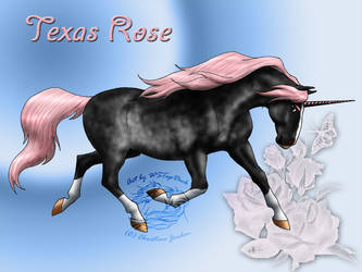 Texas Rose Commission by WSTopDeck
