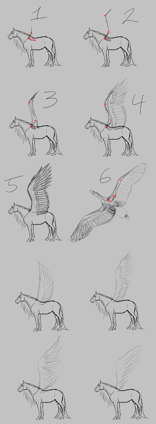 Pegasus Wing Tutorial by WSTopDeck