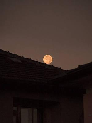 Catch the Moon by Dobina