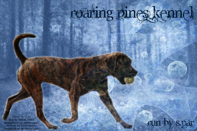 Roaring Pines Kennel for DD by SparBar