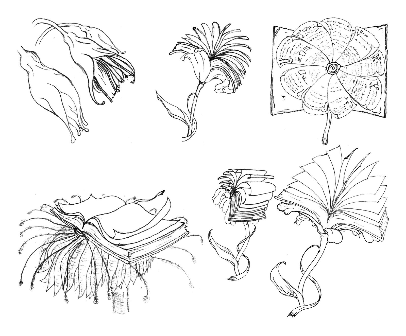 Bookified Flowers sketches by RetSamys