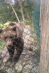 Tierpark TEIL 1 :P