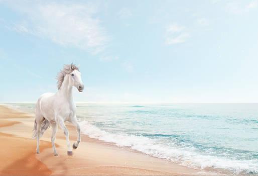 Beachy Free