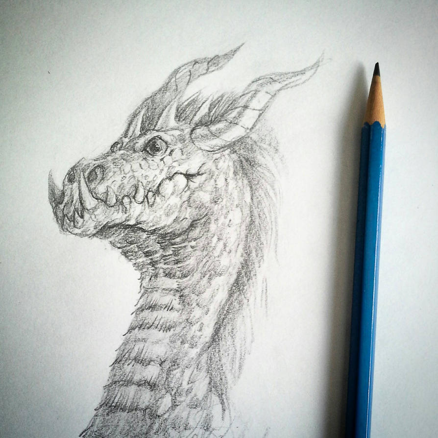 pencil dragon by zeustoves