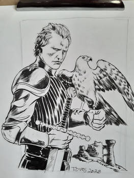 Navarre from Ladyhawke