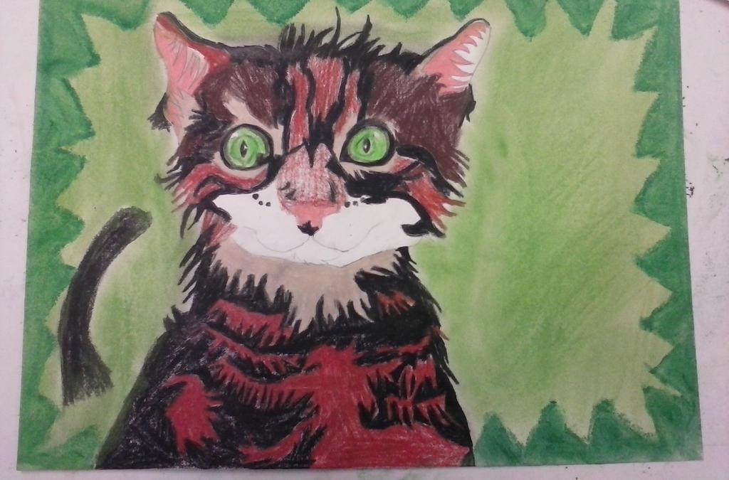 Shocked kitty by BlueMoonScorpio