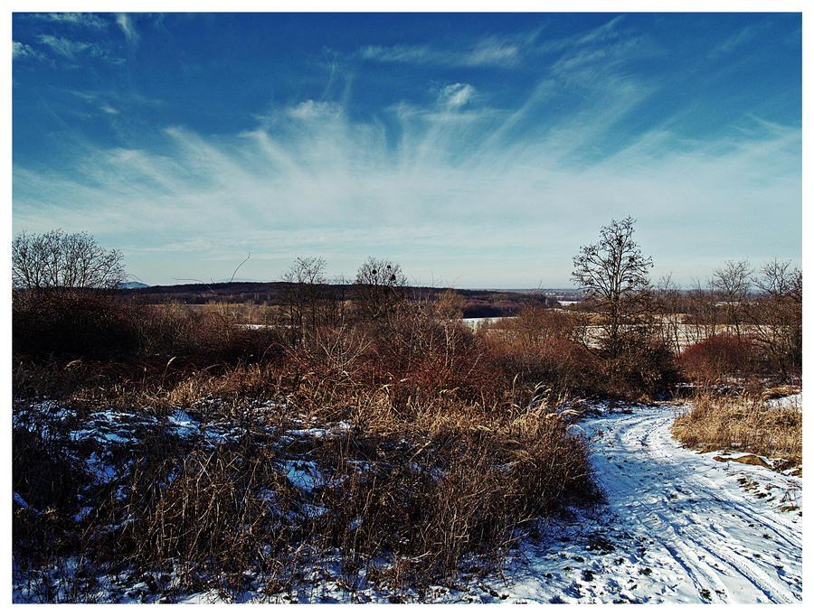 Winter landscape 4 by Csipesz