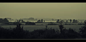 Summer morning by Csipesz