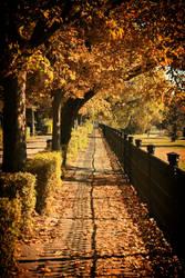 Autumn promenade II by Csipesz