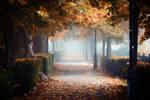 Autumn walk 3 by Csipesz