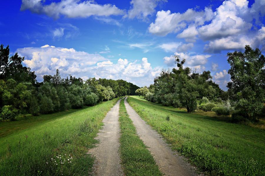 Summer sky by Csipesz