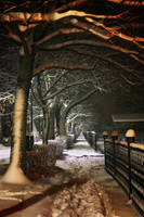 First snow...2 by Csipesz