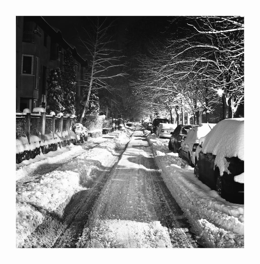 First snow...3 by Csipesz