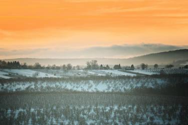 First snow 8 by Csipesz