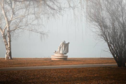 Foggy morning 12