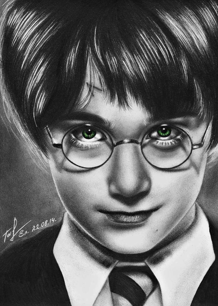 Harry Potter by Taiyo-ta