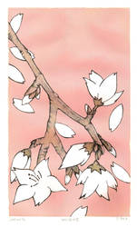Sakura by SPECK164