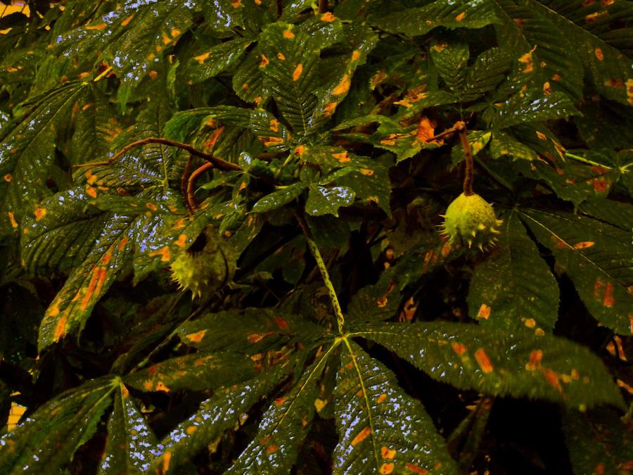 Chestnuts by MetalFaie