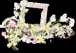 Flower Frame 1