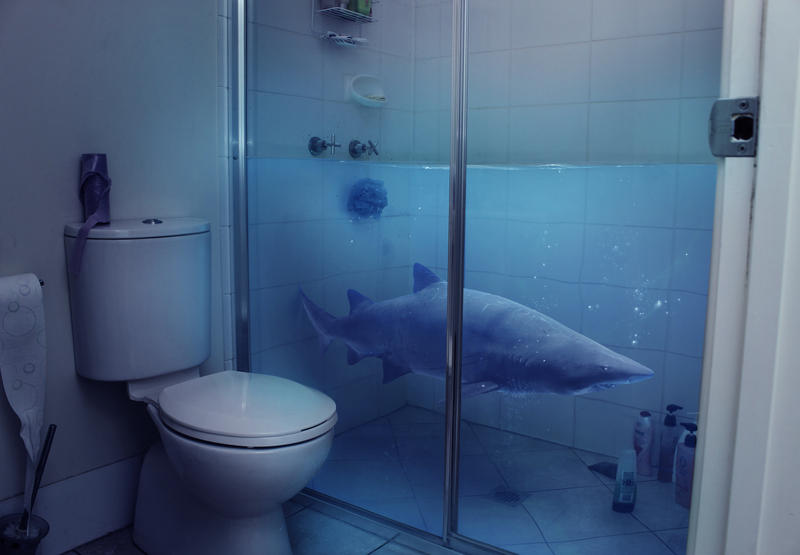Shower shark by anthonyhearsey on deviantart for What s new in bathrooms 2016