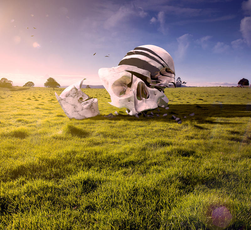 The Field by AnthonyHearsey