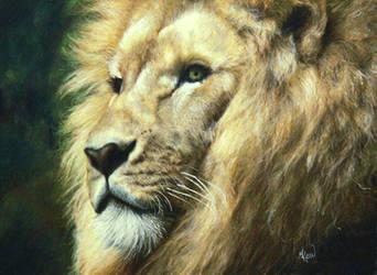 Portrait of a Lion by ArtbyMHew