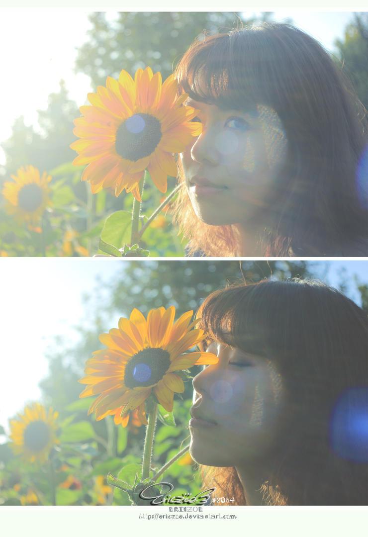 Sunflower002 by ericzoe