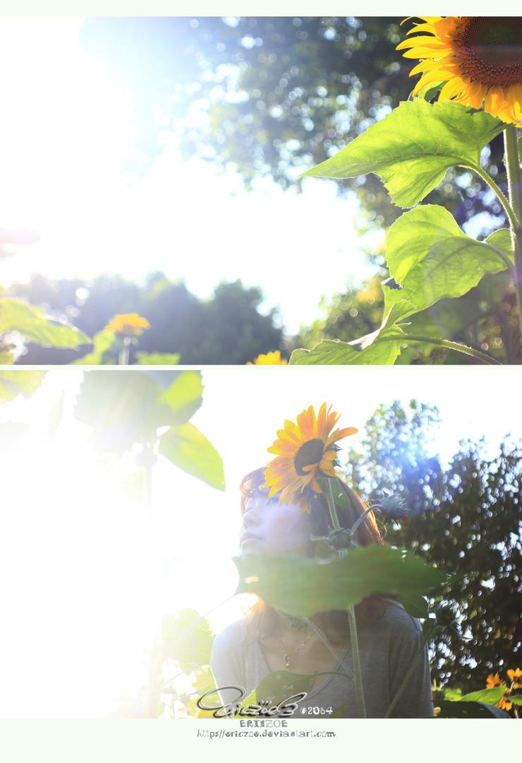Sunflower001 by ericzoe