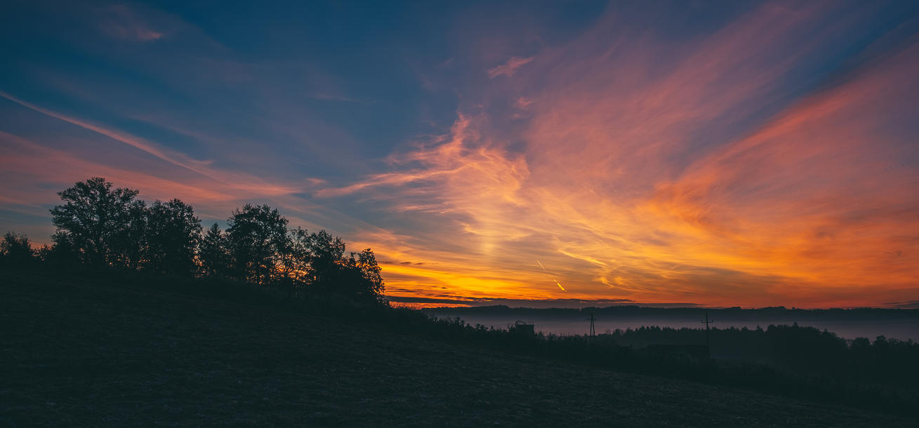 Morning Glory by tobiasth