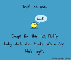 Trust No One Except This Baby Duck Who Thinks He' by Unicorns-Are-Beast
