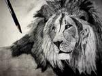 Pride, Lion Drawing