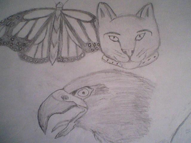 animals by Kiba-Aido