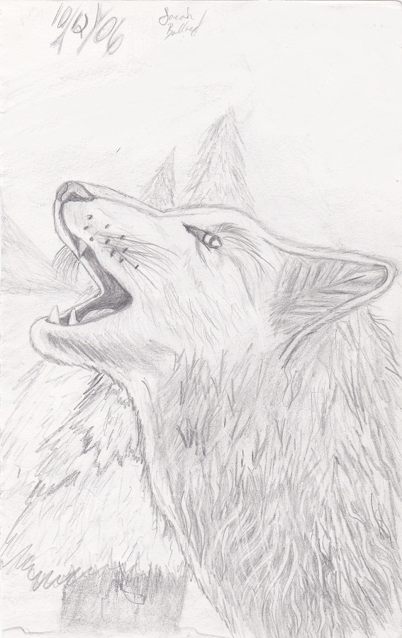 Howling Wolf by Kiba-Aido