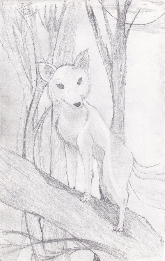 3tailed fox by Kiba-Aido