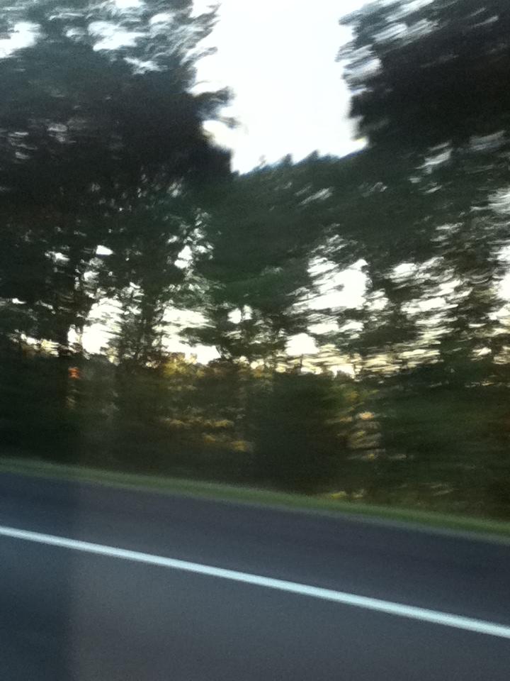 Roadside Blur by Kiba-Aido