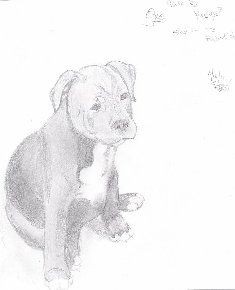 Oxe-sketch 4 Kayley by Kiba-Aido