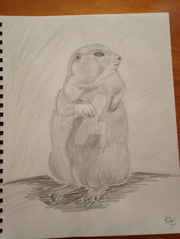 Groundhog by Kiba-Aido
