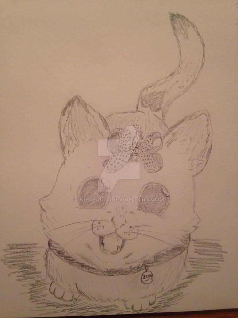 Zoey catz by Kiba-Aido