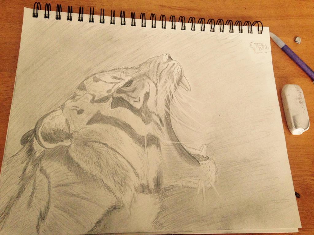 Roar by Kiba-Aido