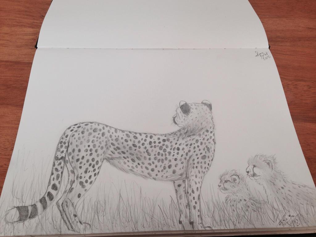 Cheetah by Kiba-Aido