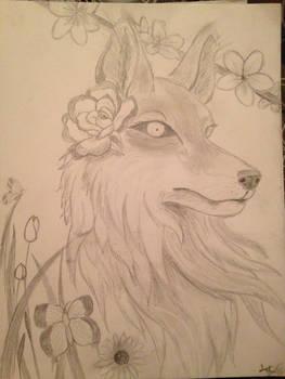 Uncolored foxy
