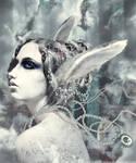 White Rabbit by sophiaazhou