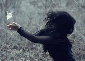 These dreams fly on fragile wings by sophiaazhou