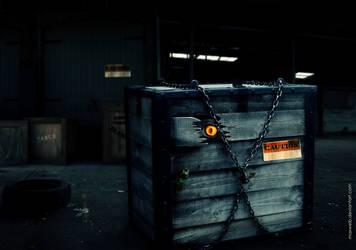 The Box by Maxwelb